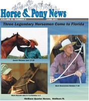 HorseAndPonyNewsCover600