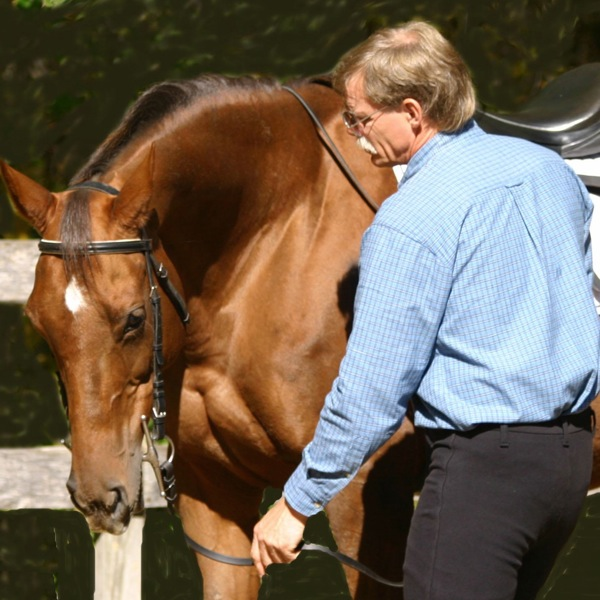 """Artistic Equitation"""